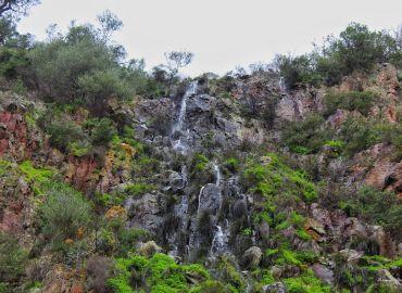 Escursione Naturalistica Pischina e Rundine - Bosa