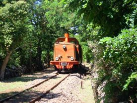 The Green Train of Sardinia