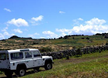 Excursions & Trekking